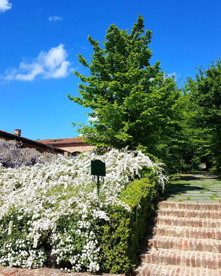 Relais-SantUffizio-Wellness-and-SPA-in-Piedmont-gardens