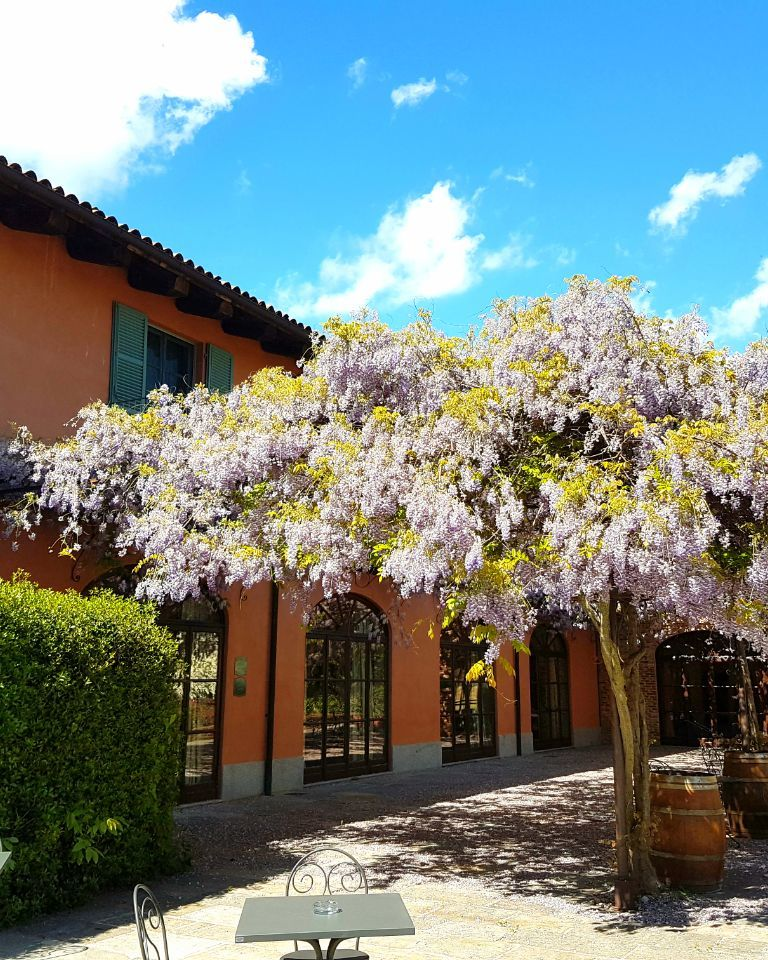 Relais-SantUffizio-Wellness-and-SPA-in-Piedmont-wisteria